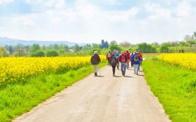 Bürgerradweg -Tour am 23. Juli 2018